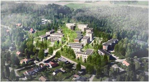 NY STUDENTBY: SiÅs vil bygge 1100 studentboliger i Skogveien. Det liker beboerne på Kaja dårlig.