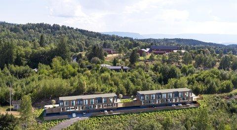 STARTER SØNDAG: Hemskogen panorama består av seks boenheter i første byggetrinn. Illustrasjon: Powwow Arkitekter
