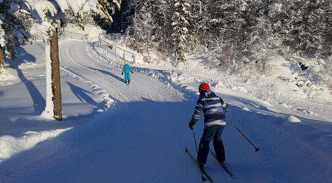 FINE SPOR: Selv etter flere dager med mildvær, kan man legge ut i fine skispor både i Sandefjord, Kodal og Andebu. Dette bildet ble tatt i vinterferien i fjor, i Andebu: Morten Fredheim Solberg