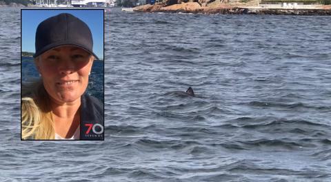 UTENFOR SEILERHOLMEN: – De var ganske nysgjerrige, og kom mot båten flere ganger, forteller Andrea Ringdal Hubred (35)