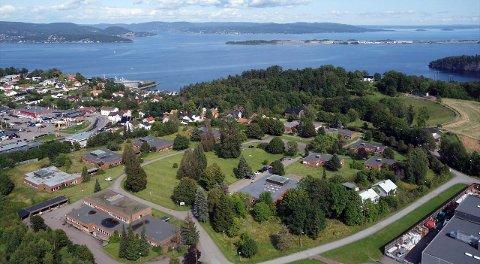 SOLBØ: - Tomten ligger høyt og luftig med flott utsikt over Oslofjorden, og særdeles gode solforhold fra morgen til kveld, heter det i annonsen.