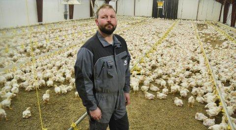Satser: Jon Thorleif Buer i kyllinghuset som varmes opp av den nye fyren som ble tatt i bruk for få uker siden. Snart skal det også forsyne verksted og bolighus med varme.              begge foto: trine bakke