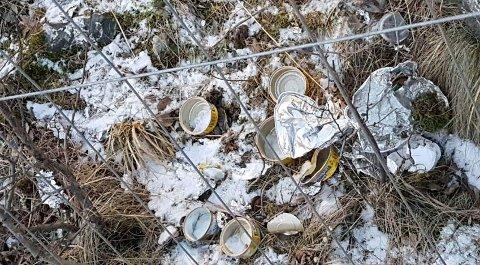 METALL PÅ AVVEIE: Bokser og annen metallemballasje ligger strødd ved Remiks' anlegg etter at fugler har fått tilgang til oppbevaringsbingen.