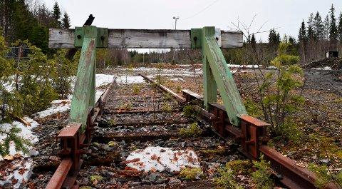 RAs gamle lastespor ved Skjelbreida er tenkt tatt i bruk igjen til tømmertransport.