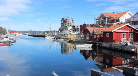 Norconsult har gjort undersøkelser om forurensening i sjøen utenfor eiendommen Smietangen i Langesund som bygges ut til boliger. Forurensning som er påvist er lette og tunge oljefraksjoner, bly og benzen. Det er vurdert at det er spredningsfare av forurensningen.