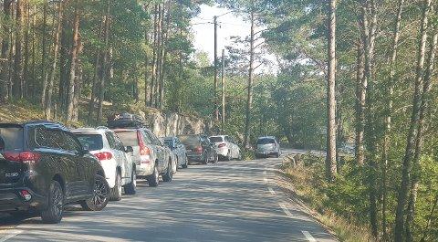 LANGS VEIEN: På store utfartsdager står biler parkert langs Børtevannsveien. Det skaper problemer for større kjøretøy, som sliter med å passere.