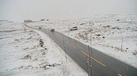 Sognefjellet 20190915.  Rv7 ved Dyranut. Vestlandet får mye nedbør denne helgen. En lang rekke veier er stengt på grunn av ras, og fjelloverganger er stengt på grunn av snø. Foto: Statens vegvesen webkamera / NTB scanpix