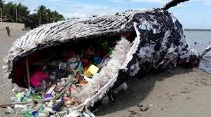 hval med plast i magen