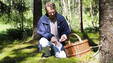 SOPPSANKING:  Biolog Kolbjørn Mohn Jenssen på sopptur et tidligere år.