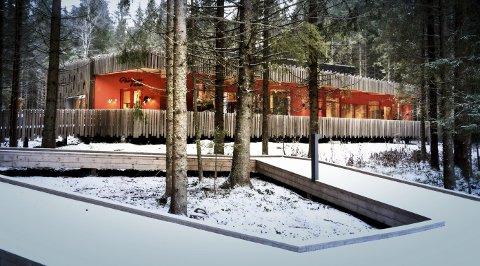 - Selvfølgelig skal Prøysenhuset ha en spesiell plass i kultursatsingen, men 47 millioner kroner til investeringer og drift neste fire år, er Sp kritiske til.