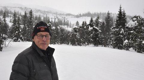 BYGGES UT: En ny reguleringsplan - som blant annet omfatter eiendommen Løkjestaul - skal nå behandles av Tinn kommune. Grunneier Håvard Hoel går med på at det bygges ut små hytter tomta. Her fra en tidligere vinter.