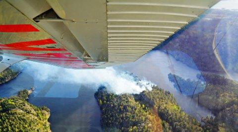 BRANN: Dette bildet er fra 2014 da det ble oppdaget skogbrann ved Hallevannet helt sør i Vestfold. Mannskaper fra Larvik brannvesen rykket ut for å slukke.