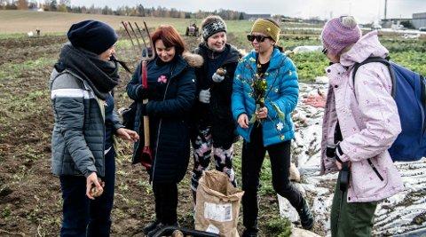 Damene synes de har godt språklig og faglig utbytte av å være i Dysterjordets andelsjordbruk. Fra venstre: Sophie Rahmé, Elena Mamasheva, Iuan Fu, Olöf Önundardottir, og Inger Johanna Hoftun.