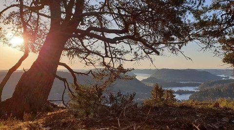 """Gullåsen på søndeled er en av de mange turene Idun IL tilbyr på denne """"turpakken""""."""