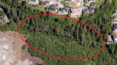 Det er dette området som skal opparbeides med badekulp og nye turstier.