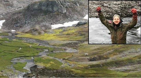Villrein på oppsida  av turiststien ved Hellevassdalen vest på Hardangervidda.  Runar Johanson (innfelt) såg og dyra kryssa turistløypa, og opplev det same i samband med jakt