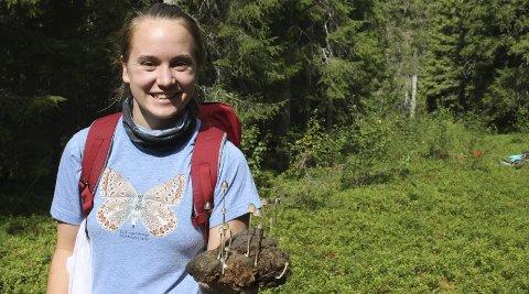 På kartleggingsleir: Helene Lind Jensen og over 40 andre, flere av de tilreisende, kartla store naturområder i Grane og Hattfjelldal i august. foto: Benedicte Wærstad