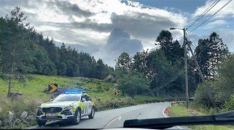 Ulukka skjedde i nærleiken av der granene stod i Herøysund. Politiet har oppretta sak.