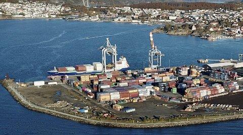 Nytt styre? Bør kommunestyret ta sitt ansvaret og velge et nytt uhildet havnestyre, hvor kompetanse og integritet er i fokus? spør Tor-Alfred Lundh.Foto: Privat