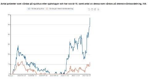 Oversikten viser utviklingen i antall innlagte pasienter på sykehus i Västerbotten (blå graf) og antall intensivpasienter (oransje graf).