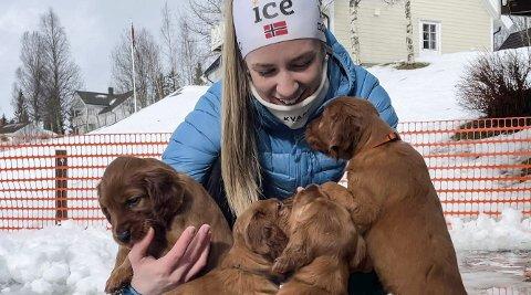 Emilie Ågheim Kalkenberg er ferdig med skiskyttersesongen. Nå sitter hun i karantene hjemme på Skonseng mens hun koser seg med familiens nye hundekull.
