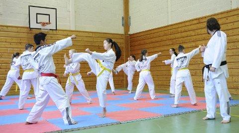Spark og slag: Det er allsidig trening som skal til for å drive med taekwondo. Master Geir Øien (til høyre) hadde i helgen flere øvelser med Tustna taekwondo klubb.