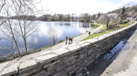 SKAL BORT: Steinmuren langs «Vannveien» frå 1960-talet skal rivast. Fylkeskommunen, Flora kommune og vegvesenet jobbar no med ei erstatning. Foto: Dag Nesbø Frøyen