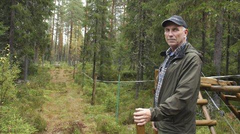 Ingen tap: I år ble det ingen rovdyrtap innenfor rovdyrgjerdet på Grue Finnskog. Stein Sorknes er fornøyd med resultatet, men oppgitt over at utmarka ikke kan brukes som før.