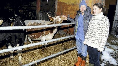 DRIVER VIDERE: Markus Crawfurd Koot og Elisabeth Crawfurd fortsetter gårdsdrift med 10-12 kyr her på Skarrbo gård i Langeliveien. foto: lars ivar hordnes