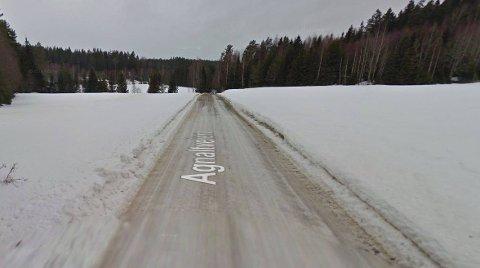 KRYSSET VEIEN: Gilde påstår han observerte to ulver krysse veien omtrent på dette stedet.