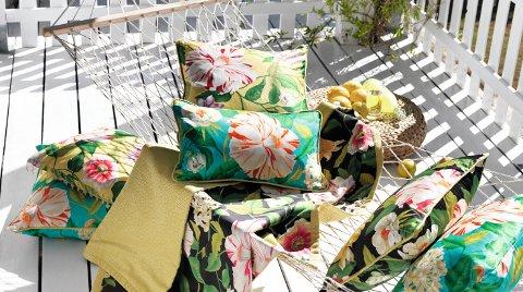 Frodig på terrassen med blomster som ikke må vannes.