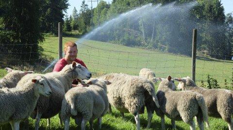 Den unge bonden Kristian Foss stod på i sommer for å sørge for grønt beite til sauene sine, og nok fôr til kaldere dager. Nå har han søkt erstatning for avlingssvikt etter tørken.
