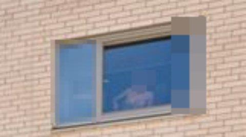 TILFELDIG: I en boligannonse på Finn.no dukket dette uventede motivet opp i bakgrunnen på et av bildene. Bildet er nå slettet.