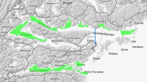 Havforskningsinstituttet har tegnet inn gyteområdene til  fjord- og kysttorsk med grønt. Den blå streken mellom Øysang og Buvika har Fiskeridirektoratet satt som grense. Innenfor denne streken kan det bli forbud mot all fiske.