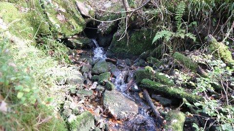 FREKHAUG: Forureininga av elva ved Mjåtveit har lenge vore eit mysterium.