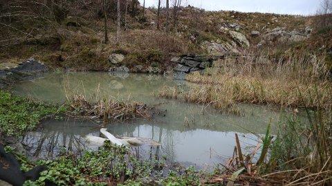 Dette bassenget er meint til å fange opp steinstøv før det hamnar i Kloppedalsbekken. Mjåtveitelvens forening meiner at bassenget ikkje har god nok effekt.