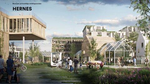"""Fra skisseforslaget """"Årstidenes by"""" (Henning Larsen, Alliance arkitekturstudio, Kristiania Byplankontor, Goudappel, NIKU)."""