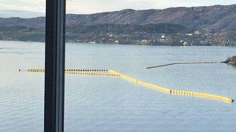 Sjøforsvaret har lagt ut barrierer som et beskyttelsestiltak mot sjøen ved Haakonsvern og ubåtbunkeren på Laksevåg.
