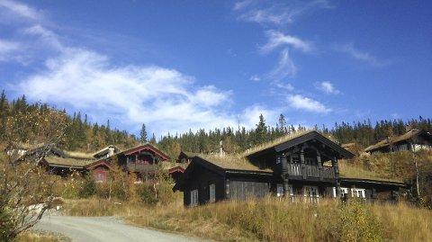 Byggeboom: Dårlige tider og eiendomsskatt legger ingen demper på hyttebyggingen i Eggedalsfjella.Foto: Torunn Bratvold