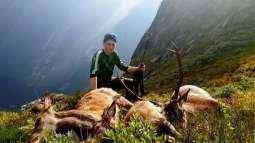 Hjortejakt: Her har Håkon Joner Skjerven skote tre hjortar på eit døgn.