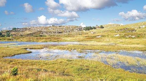 Killingtjørnet (som ligger øst for Åkra), med omkringliggende områder, er viktig for rødlistede fuglearter som hubro, vipe og storspove, og er et område som vil bli svært negativt påvirket av både en full omkjøringsvei og en redusert variant.