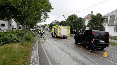 Haugesund 1106 2018 En stor grein fra et av trærne i Karmsunddgata knakk i vinden og tok med ledninger og en stolpe