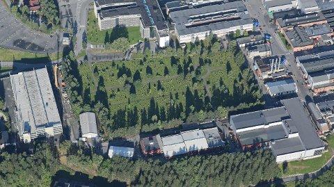Denne kirkegården ved Kongsberg teknologipark skal nå bli tatt i bruk som ordinær gravplass.