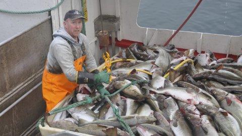 SKREI: Tor Agnar Jobotn på «Hitterværing» var med på å levere de 3910 tonnene med skrei som ble levert i Lofoten i forrige uke. Foto: Kai Nikolasien