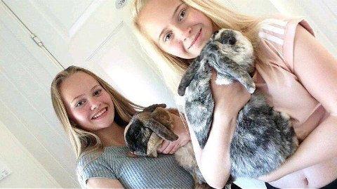 UNGE GRÜNDERE: Pia og Silje Sætherskar har egne kaniner. Nå vil de også passe andre sine når eierne reiser på ferie. Nylig etablerte de DYRøy Pelshotell. - Kaniner er veldig koselige dyr, sier jentene.