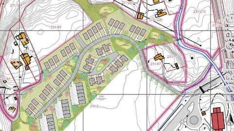 SUNDVOLLEN: Hole kommune har fått denne illustrasjonsplanen for det foreslåtte boligområdet på Sundvollen.