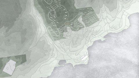 FORSLAG: Statskog ønsker å bygge mange boliger på Delåsen på Tofte, men det vil ta mange år før det eventuelt kan bli en realitet.