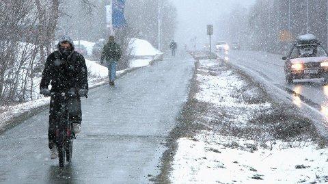 LANGTIDSVARSEL: Denne uken starter med minusgrader og snø, så kommer lavtrykket og plussgradene flere steder. Foto: Ola Solvang (Avisa Nordland)