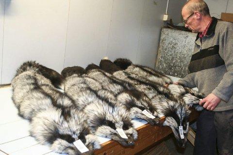 SISTE FINPUSS: Roald Røe legger siste hånd på verket før skinnene er klare for kundene - primært i Kina og Russland.