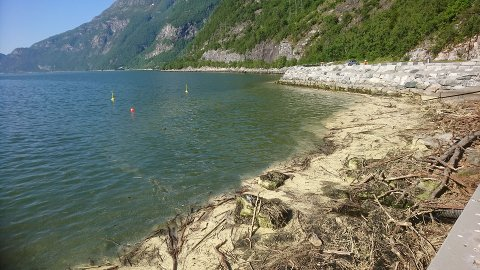 Bildet er tatt 16..6. kl. 17.40. Ikke et menneske i Fjordparken. – Jeg forstår ungdommene når jeg spør hvorfor de ikke bruker den kommunale badeplassen. Den er ubrukbar, mener artikkelforfatteren. Foto: Kjell Jostein Stavik.
